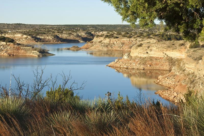 Image showing brackish water source